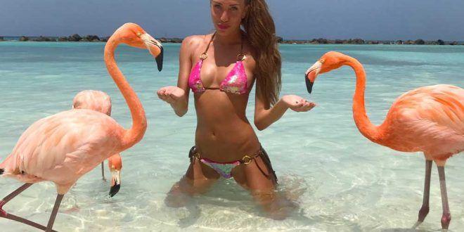 Flamingo beach ecco la spiaggia dove fare il bagno con i - Dove fare il bagno a como ...